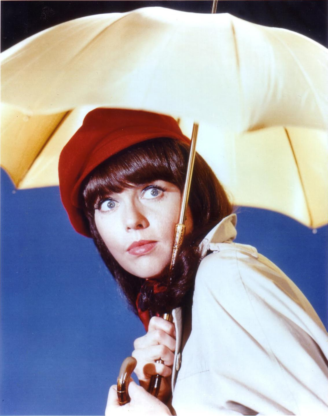 barbara feldon bio et photos